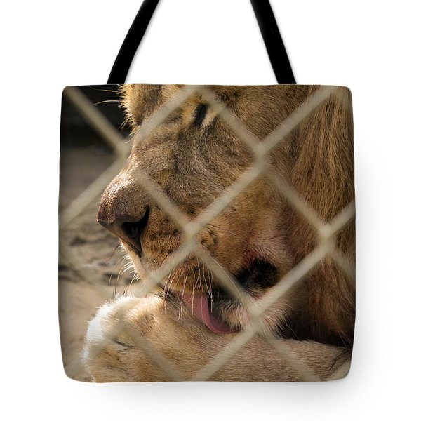Time For A Bath Tote Bag