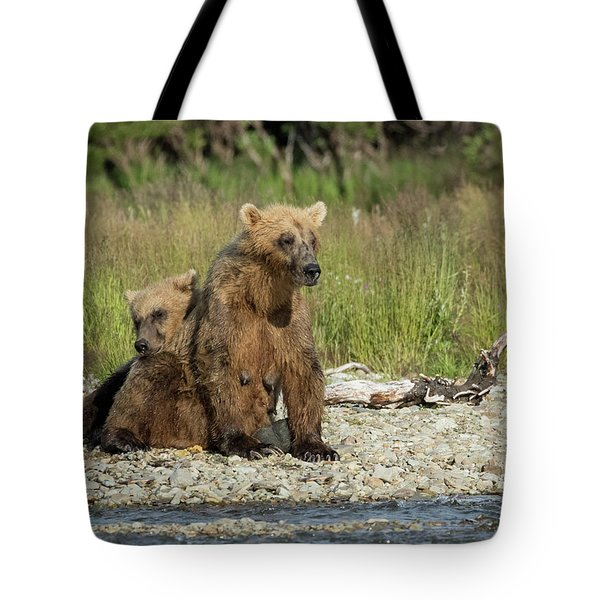 Tote Bag featuring the photograph Time For A Nap by Cheryl Strahl