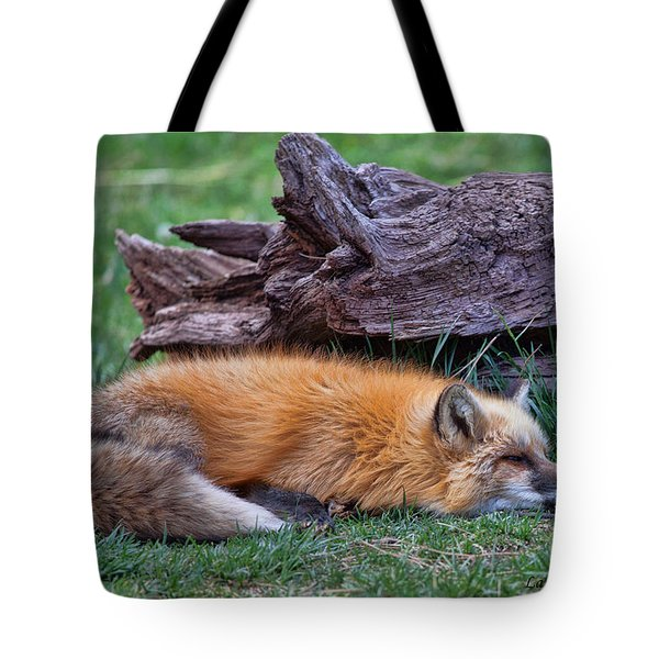 Time For A Nap Tote Bag