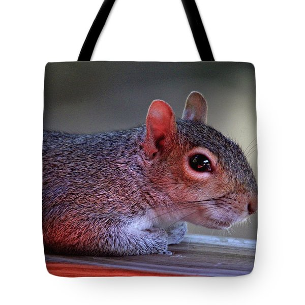 Tote Bag featuring the photograph Time For A Rest by Trina Ansel