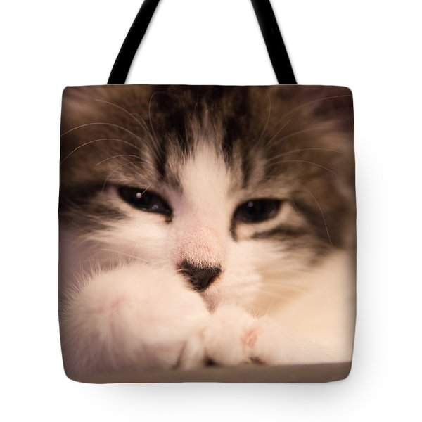 Tote Bag featuring the photograph Time To Nap by Erin Kohlenberg