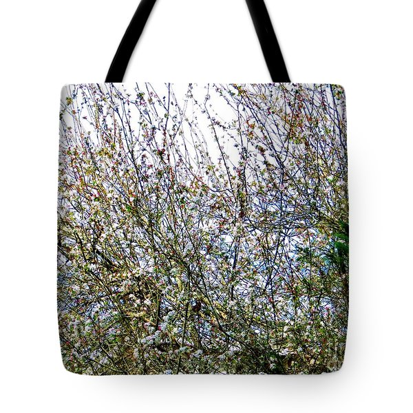 Time To Shine Tote Bag by Tim Townsend