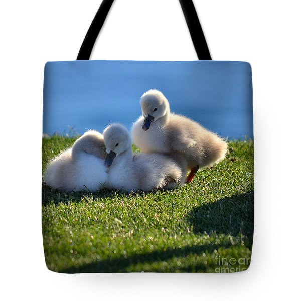 Time To Snuggle Tote Bag