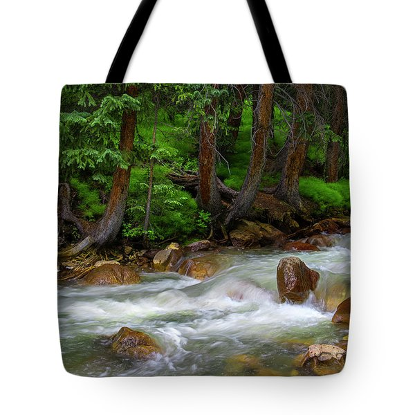 Tote Bag featuring the photograph Timeless by Tim Reaves