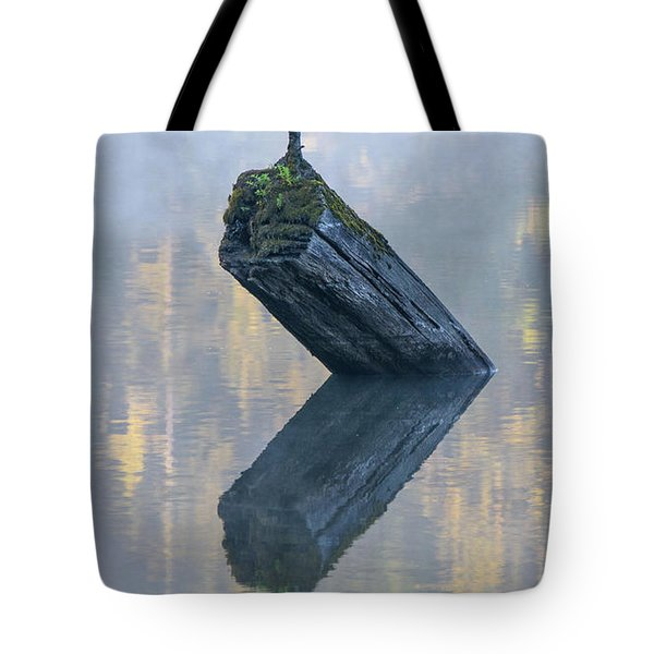 Timeless Tranquility Tote Bag