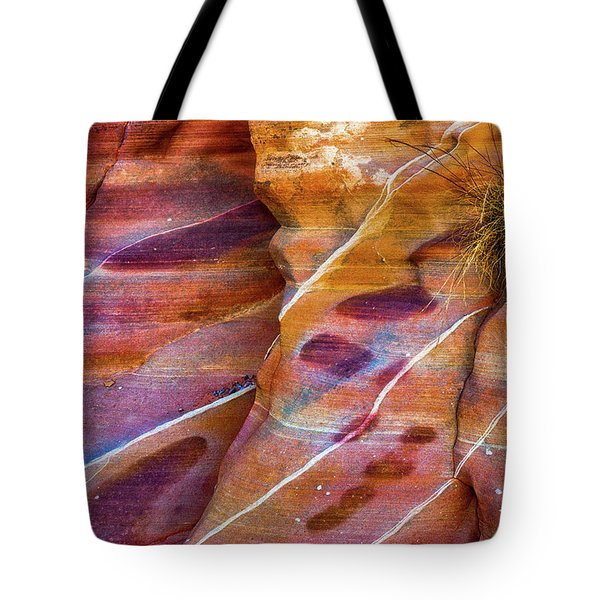 Tote Bag featuring the photograph Timelines by Darren White