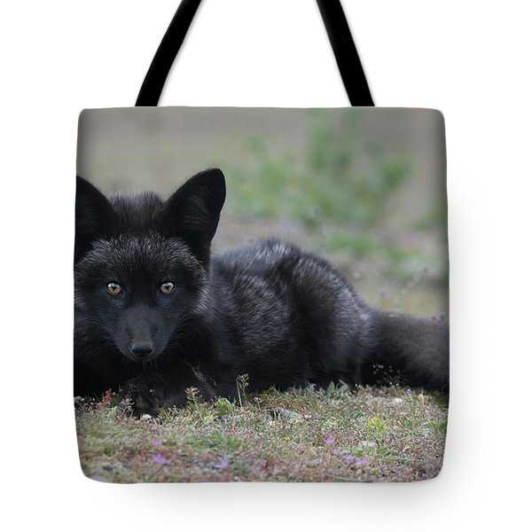 Tote Bag featuring the photograph Here's Looking At You by Elvira Butler