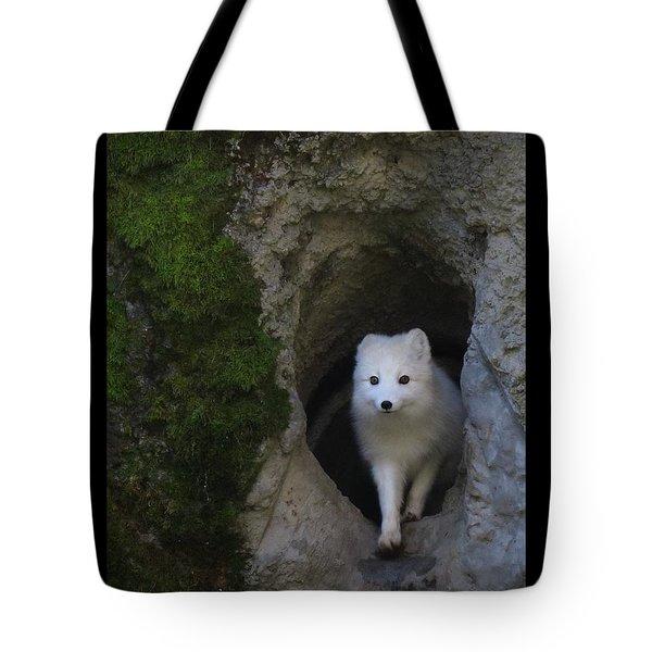 Timidly Tote Bag