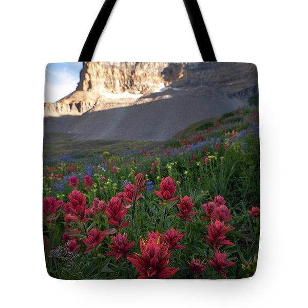 Timpanogos Paintbrush Tote Bag