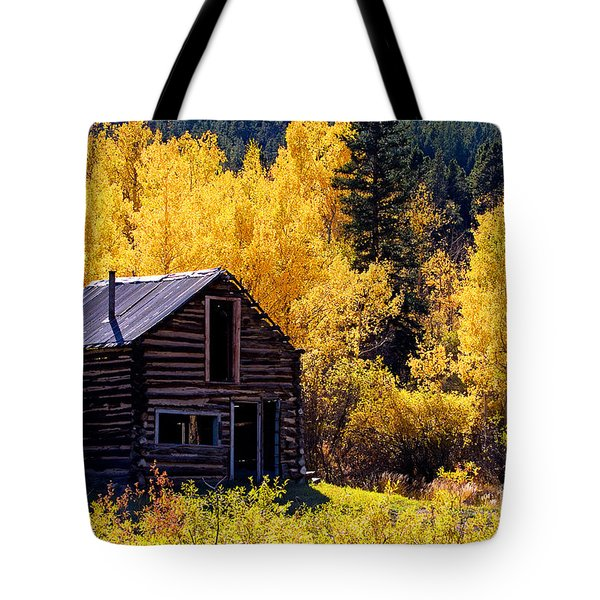 Tin Roof Tote Bag