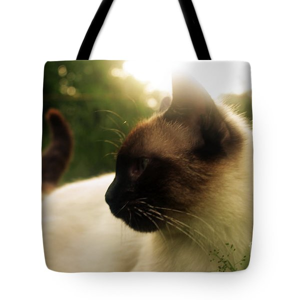 Tingsha Sun Tote Bag by Michelle Wolff