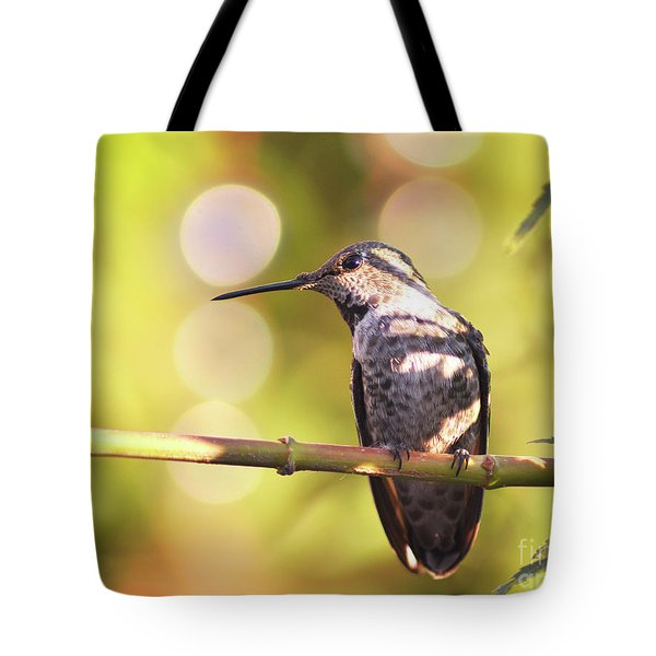 Tiny Bird Upon A Branch Tote Bag