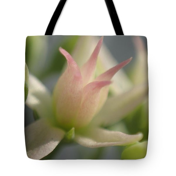 Tiny Crown Tote Bag