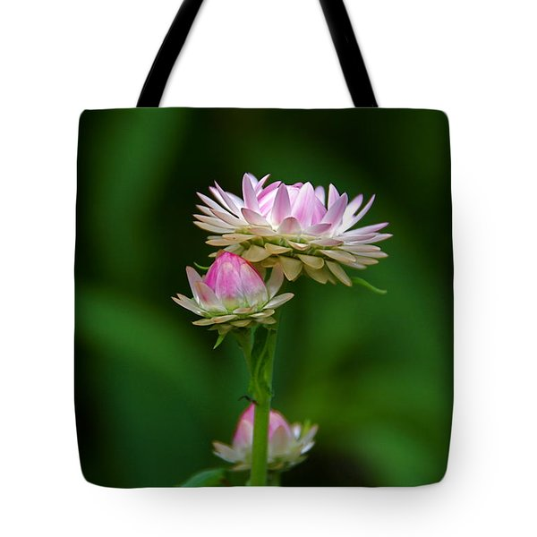 Tote Bag featuring the photograph Tiny Dahlias Green Aura by Byron Varvarigos