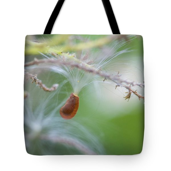 Tiny Seed Tote Bag