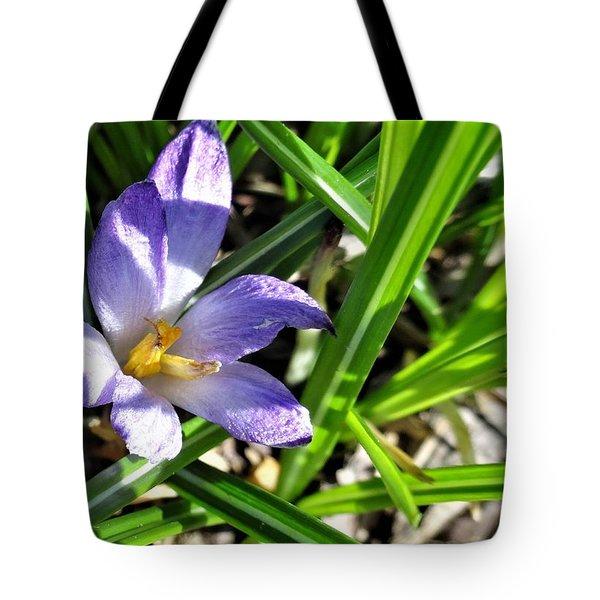 Tiny Violet Tote Bag
