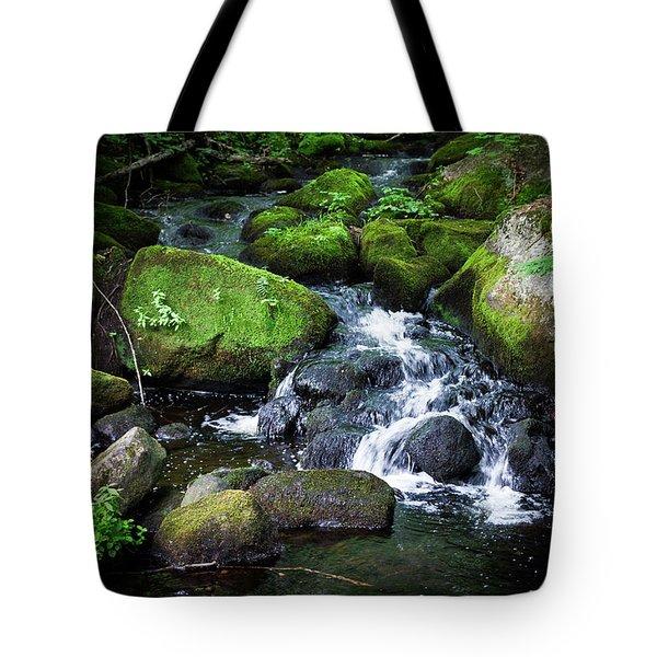 Tiny Waterfall - Ellsworth Maine Tote Bag
