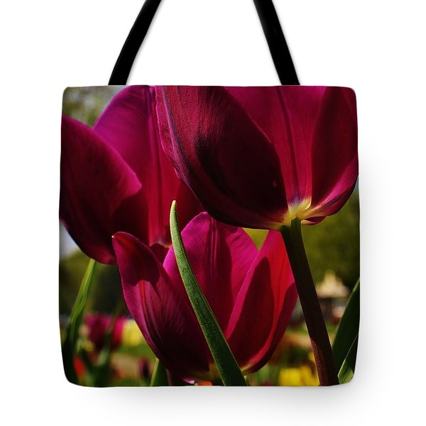 Tip Toe Through The Tulips Tote Bag by Bruce Bley