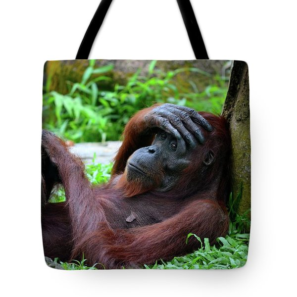 Tired Female Orangutan Ape Rests Against Tree With Hand On Her Head Tote Bag