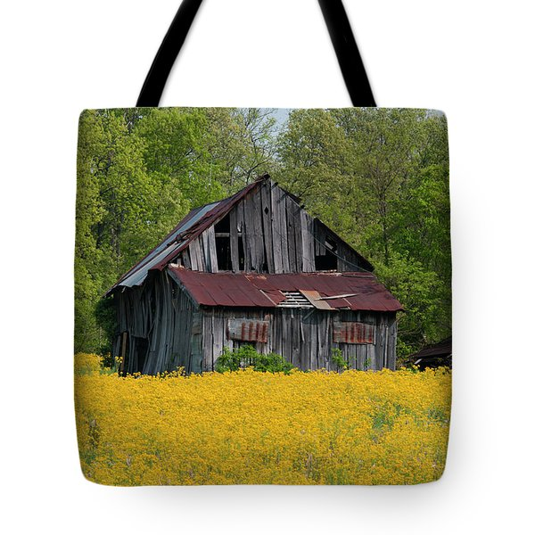 Tote Bag featuring the photograph Tired Indiana Barn - D010095 by Daniel Dempster