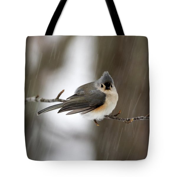 Titmouse During Snow Storm Tote Bag