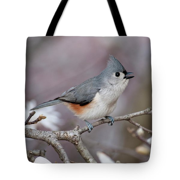 Tote Bag featuring the photograph Titmouse Song - D010023 by Daniel Dempster