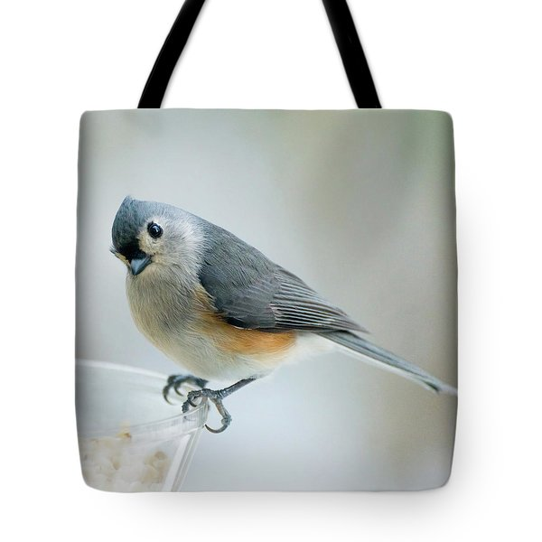 Titmouse With Walnuts Tote Bag