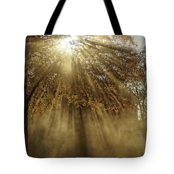 To Catch A Ray Of Sunlight Tote Bag