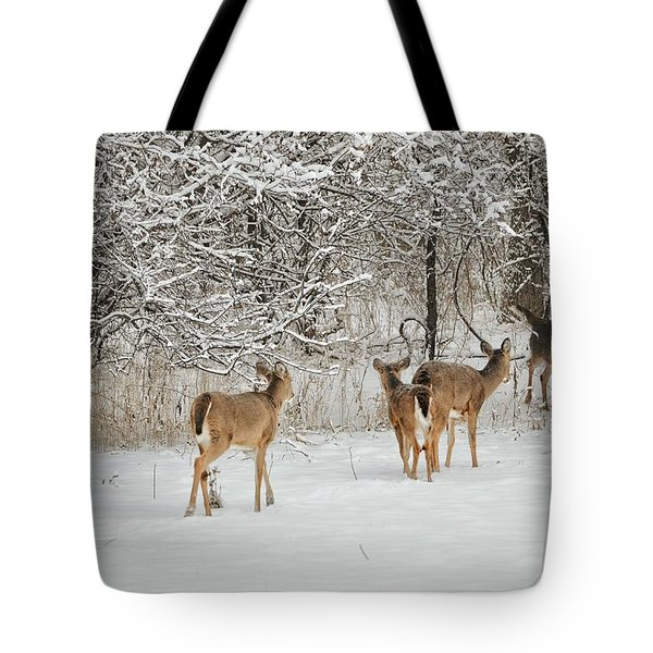 Tote Bag featuring the photograph To Greet A Friend by Nikki McInnes