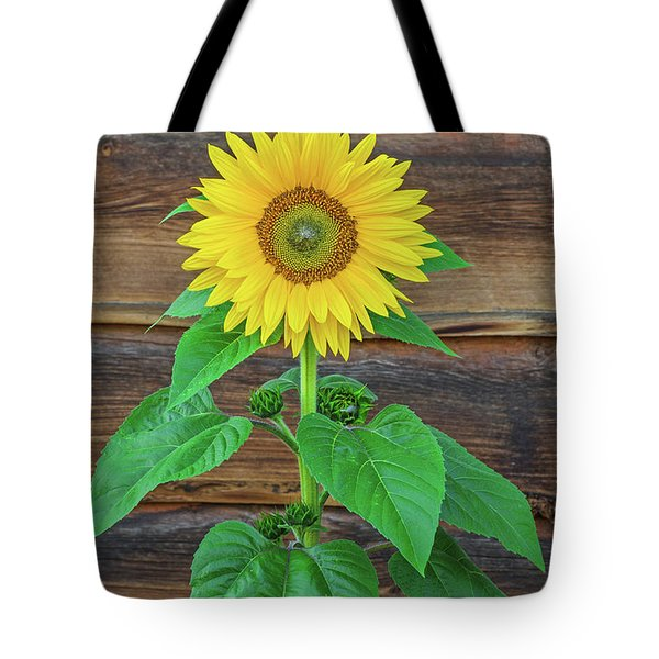 To Love And Be Loved Is To Feel The Sun From Both Sides.  Tote Bag