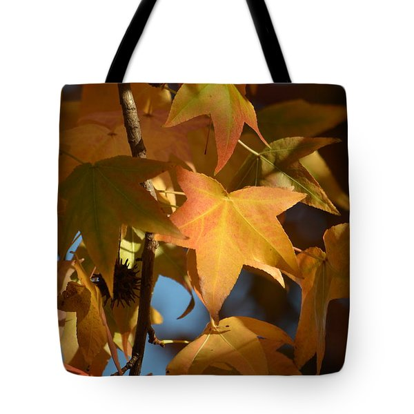Tote Bag featuring the photograph To Me Is Fun It Feels Like Fall.  by Alex King