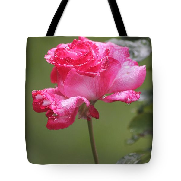 Tote Bag featuring the photograph To My Dearest Friend by Vadim Levin