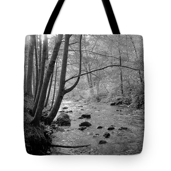 To The Mornings Tote Bag