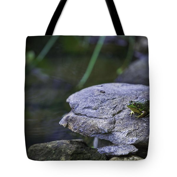 Toading It Up Tote Bag by Jason Moynihan