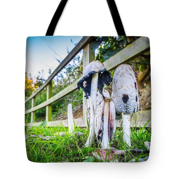Tote Bag featuring the photograph Toadstools. by Gary Gillette