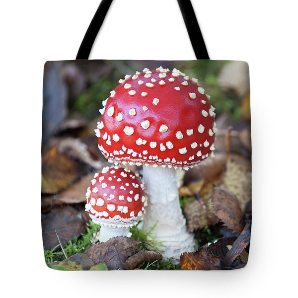 Toadstools In The Woods Vi Tote Bag