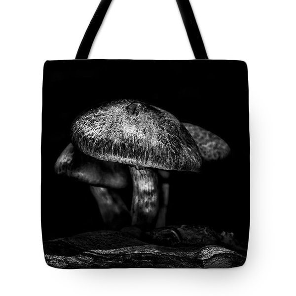 Toadstools On A Toronto Trail 1 Tote Bag by Brian Carson