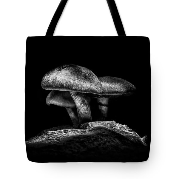 Toadstools On A Toronto Trail No 3 Tote Bag by Brian Carson
