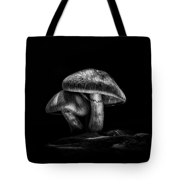 Toadstools On A Toronto Trail No 2 Tote Bag by Brian Carson