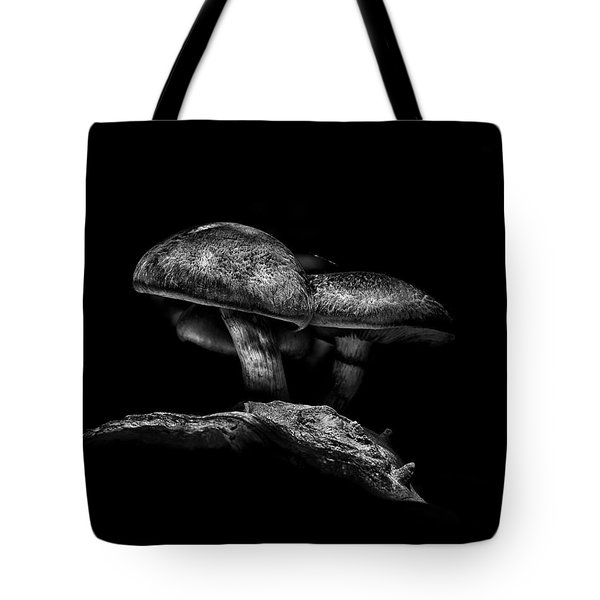 Toadstools On A Toronto Trail No 4 Tote Bag
