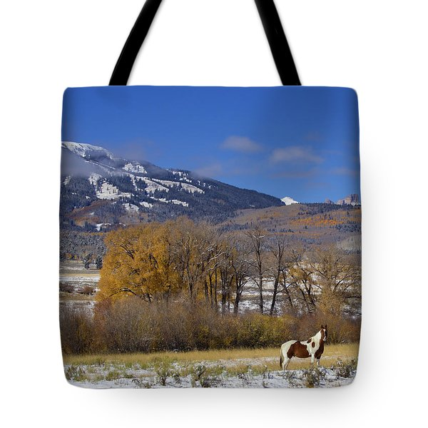 Tobiano Paint Horse Below The Castles In The West Elk Wilderness Tote Bag