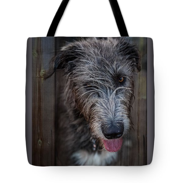 Toby, The Irish Wolfhound Pup Tote Bag
