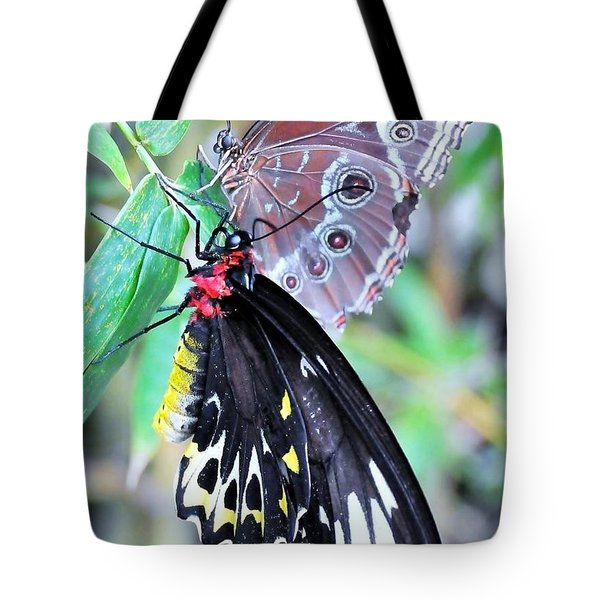 Together Always Tote Bag by Kicking Bear Productions