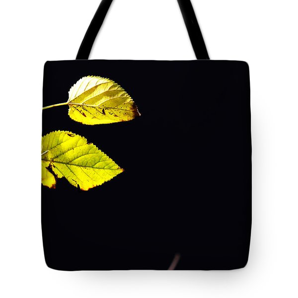 Together In Darkness Tote Bag