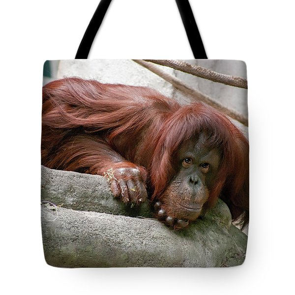 Tolerating Patience Tote Bag