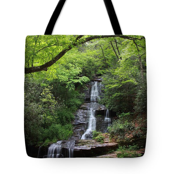 Tom Branch Falls - Gsmnp Tote Bag