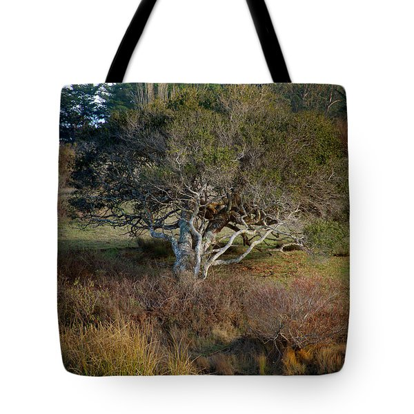 Tomales Bay Marin County California Tote Bag by Wernher Krutein
