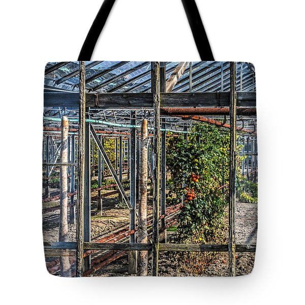 Tomatoes And Pumpkins Tote Bag