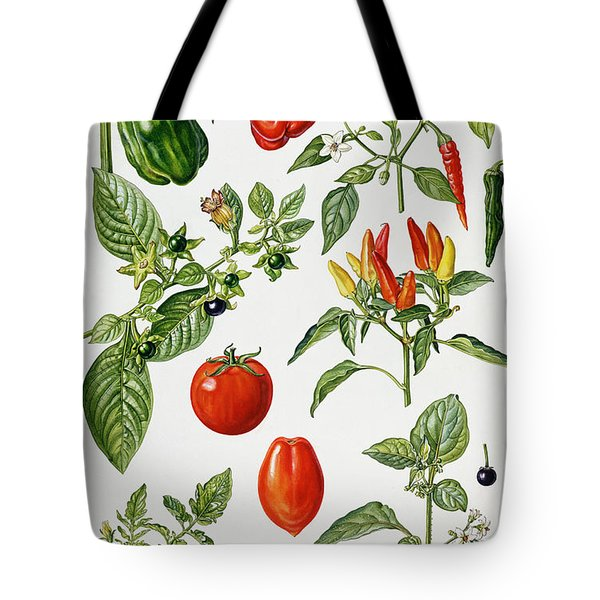 Tomatoes And Related Vegetables Tote Bag by Elizabeth Rice