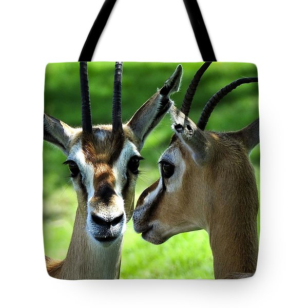 Tommy Talk Tote Bag by David Lee Thompson